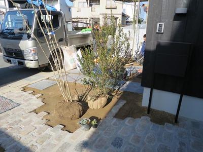 庭木の植栽2