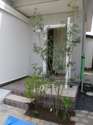 庭木の植栽