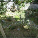 デスクワークと自宅の庭