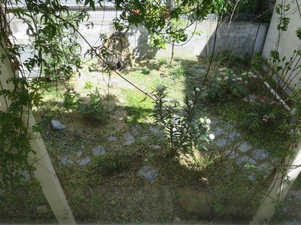 自宅の春の庭