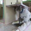 壁の漆喰塗りと造作建具